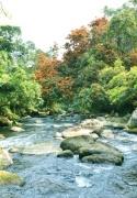Điểm du lịch sinh thái Suối Nước Moọc (tour hàng ngày)